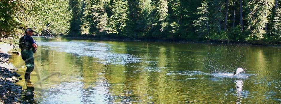 Freshwater 24 Slider