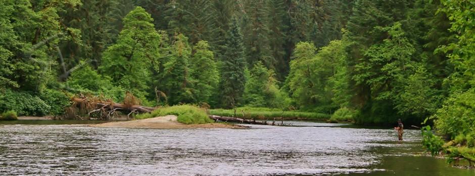 Freshwater 22 Slider